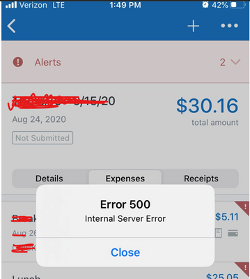 Concur 500 Error - David Mason.png