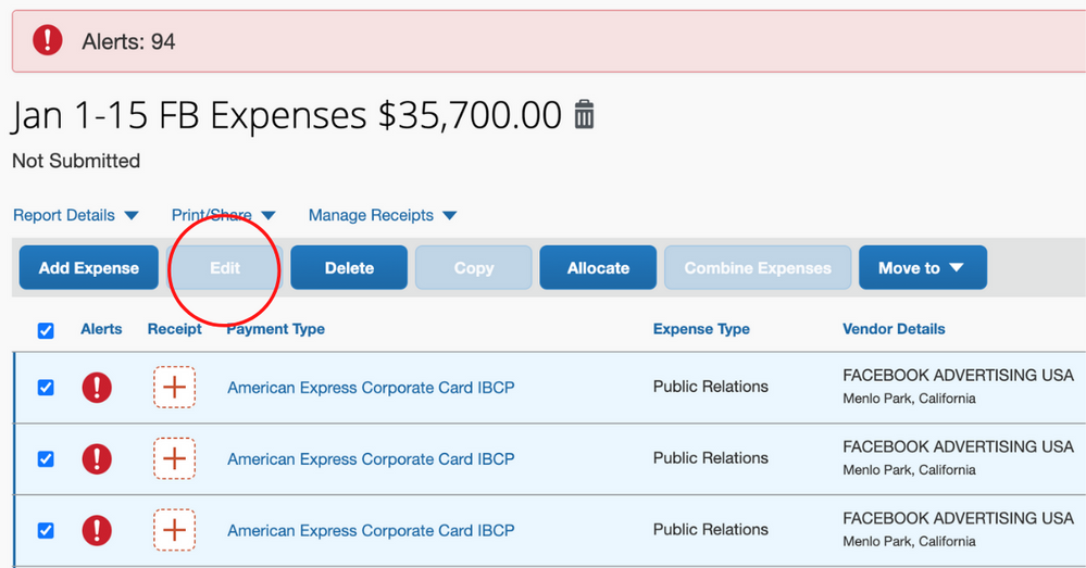 EXPENSE REPORT.png
